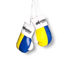 Mini Boxhandschuhe mit ISKA aufgedruckt